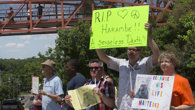 Tierfreunde taten in den vergangenen Tagen vor dem Zoo ihren Unmut über den Tod Harambes kund. (Bild: AP)