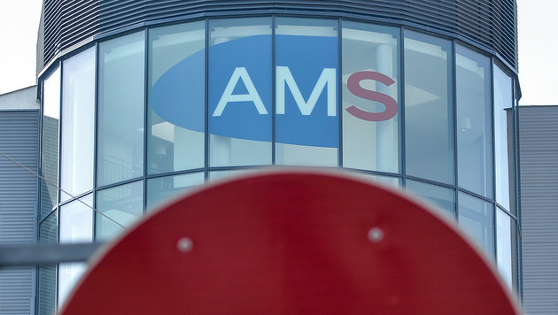 So antworten AMS-Berater unzufriedenen Wienern (Bild: APA/Herbert Neubauer)