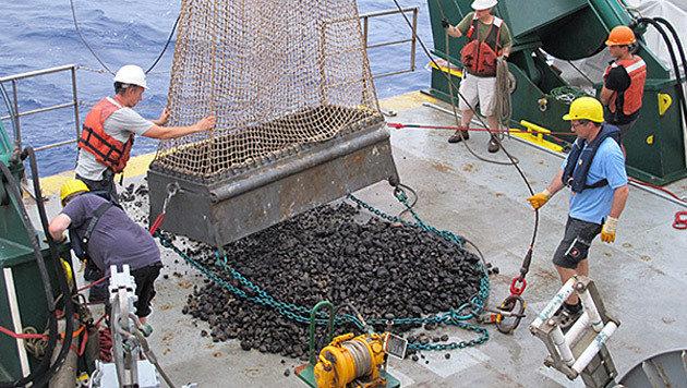 Wertvolle Manganknollen-Felder im Pazifik entdeckt (Bild: BGR)