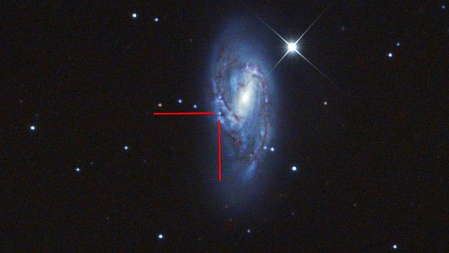 Messier 66 mit der Ende Mai entdeckten Supernova (Bild: Terry Hancock/www.downunderobservatory.com)
