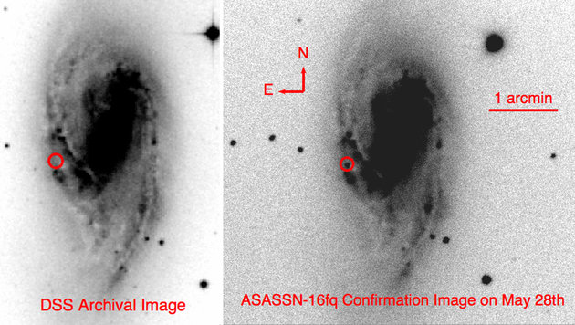 In der Archivaufnahme (links) ist die Supernova (im rot markierten Bereich) noch nicht sichtbar. (Bild: Rochester Astronomy)