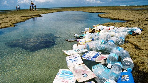 Heute ist Welt-Ozean-Tag: Meere ertrinken im Müll (Bild: globalgarbage.org)