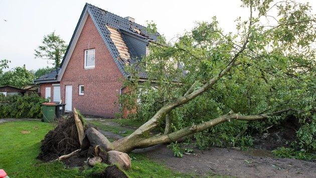Tornado zog Spur der Verwüstung durch Hamburg (Bild: EPA)