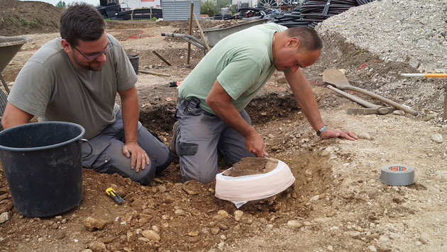 Keltischen Goldschatz nahe Kaserne in OÖ  entdeckt (Bild: APA/OÖ Landesmuseum)