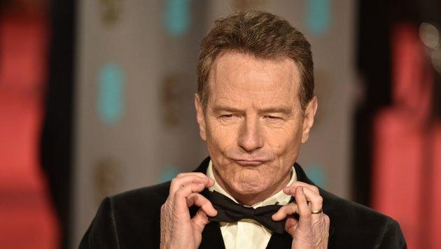 So peinlich begann die Karriere der TV-Stars (Bild: APA/AFP/NIKLAS HALLE'N)
