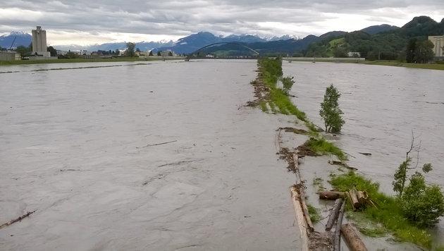 Der Rhein führte abschnittweise Hochwasser und flutete seine Überschwemmungsflächen. (Bild: APA/JOCHEN HOFER)