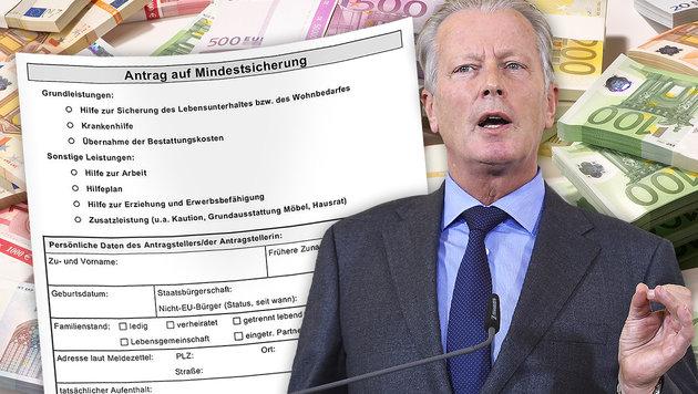 """VP-Chef: Mindestsicherung nur """"Überbrückungshilfe"""" (Bild: APA/HELMUT FOHRINGER, thinkstockphotos.de, krone.at-Grafik)"""