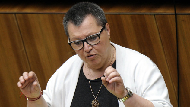 Gesundheitsministerin Sabine Oberhauser (Bild: APA/HERBERT PFARRHOFER)