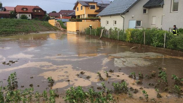 Überflutungen, auch in den Kellern der Häuser (Bild: APA/FF OHLSDORF)