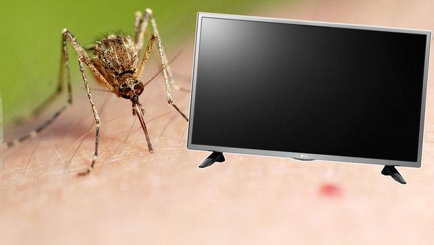 Endlich: Dieser Fernseher vertreibt lästige Gelsen (Bild: LG, flickr.com/Gilles San Martin)