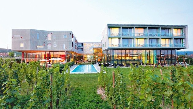 Das Louisium prägt mit seiner Architektur die Landschaft hier nachhaltig. (Bild: Kurt-Michael Westermann)