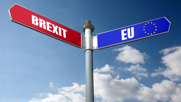 Brexit: EU-Befürworter wollen zweites Referendum (Bild: thinkstockphotos.de)