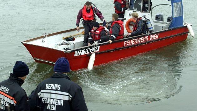 Junger Mann am Rande des Donauinselfests ertrunken (Bild: APA/HERBERT PFARRHOFER)