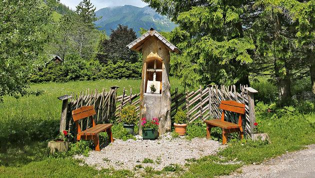 """Das kleinste """"Jagdmuseum"""" Österreichs mit einem Blick in die heimische Tierwelt (Bild: Peter Tomschi)"""