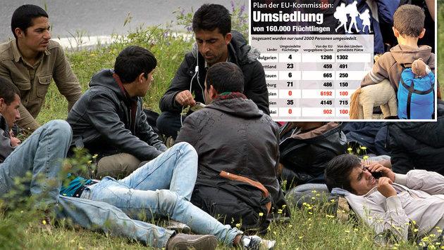"""Asylwerber wollen nicht nach Polen oder Litauen (Bild: AP, """"Krone""""-Grafik)"""