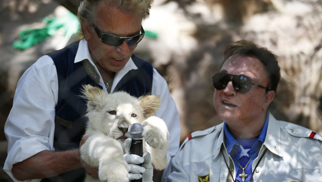 Siegfried & Roy (Bild: AP)