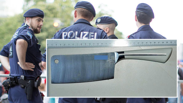 23-Jährige attackiert Freund mit Küchenbeil (Bild: APA/GEORG HOCHMUTH, LPD Wien)