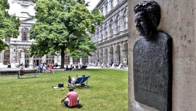Uni Wien: Nun werden auch Forscherinnen geehrt (Bild: APA/HERBERT NEUBAUER)