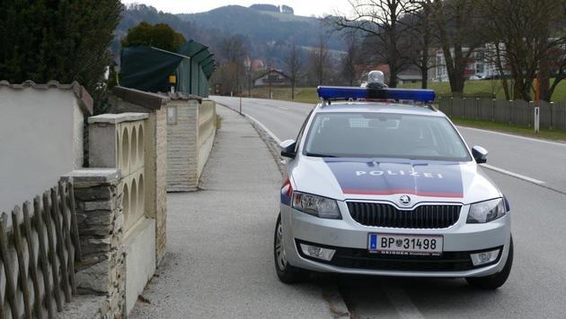 Rumänen nach brutalem Überfall auf Ehepaar gefasst (Bild: SID NÖ)