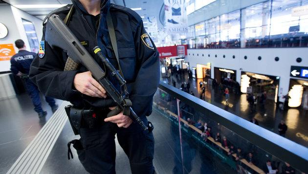 Aufregung um Polizeieinsatz am Flughafen Schwechat (Bild: APA/Georg Hochmuth (Symbolbild))