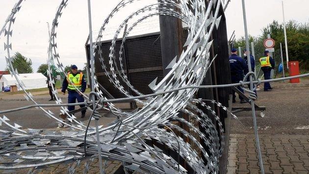 Grenzsperre an der kroatisch-serbischen Grenze (Bild: APA/AFP/LASZLO LAUFER)