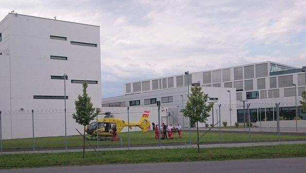 """Heli-Landung im Gefängnisgarten der Justizanstalt Korneuburg (Bild: """"Krone""""-Leserreporter Christian Grünwaldner)"""