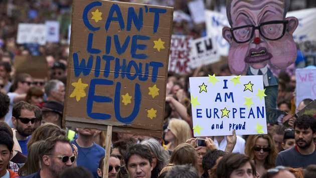 Brexit-Galionsfigur Nigel Farage tritt zurück (Bild: APA/AFP/NIKLAS HALLE'N)
