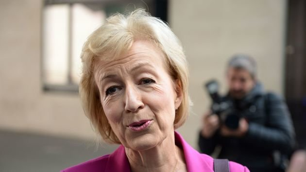 Energiestaatssekret�rin Andrea Leadsom (Bild: APA/AFP/CHRIS J RATCLIFFE)