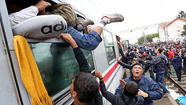 Flüchtlingsansturm an der ungarischen Grenze (Bild: AFP)