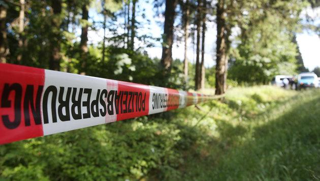 Die Polizei untersucht jenes Waldstück, in dem die Leichenteile gefunden wurden. (Bild: APA/dpa-Zentralbild/Bodo Schackow)