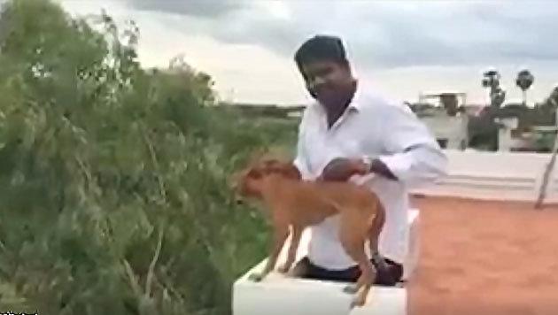 Das Video von der grausamen Tierquälerei verbreitete sich rasend schnell im Netz. (Bild: twitter.com/iamkarthikd)