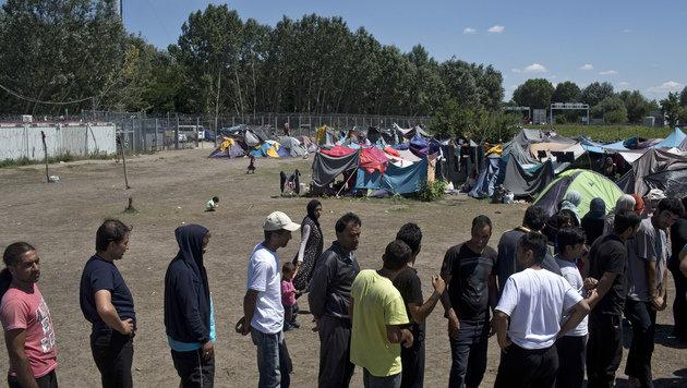 Flüchtlinge warten an der serbischen Seite auf Einlass nach Ungarn. (Bild: ASSOCIATED PRESS)