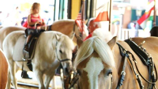 Sorge um Tiere aus Wiener Pony-Karussell im Prater (Bild: Prater Wien GmbH)