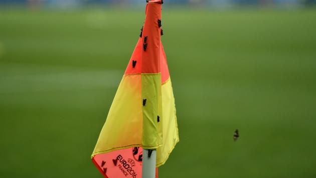 Mottenplage beim EM-Finale in Paris (Bild: AP)