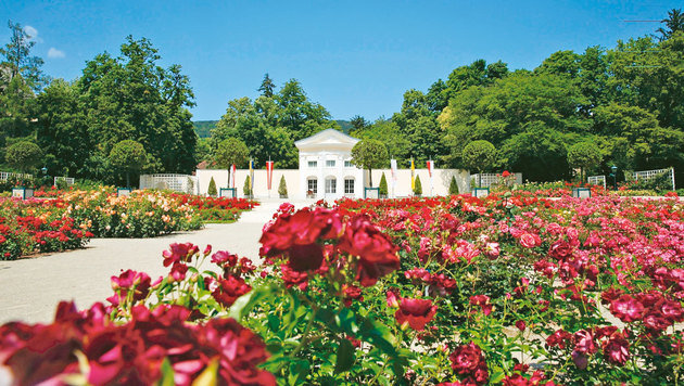 Die wunderschöne Gartenanlage in Baden (Bild: Martin Jöchl)