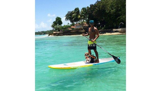 Lewis Hamilton mit Hund beim Stand Up Paddling (Bild: Viennareport)