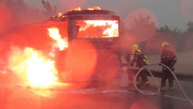 Die Einsatzkräfte bahnten sich ihren Weg zum Brandherd. (Bild: FF Wiener Neudorf, FF Guntramsdorf)