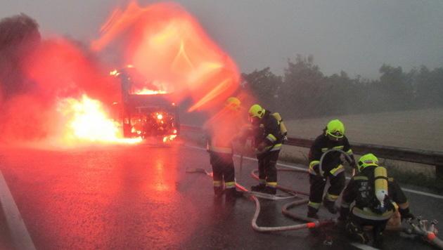 Beim Eintreffen der Feuerwehr brannte der Bus lichterloh. (Bild: FF Wiener Neudorf, FF Guntramsdorf)