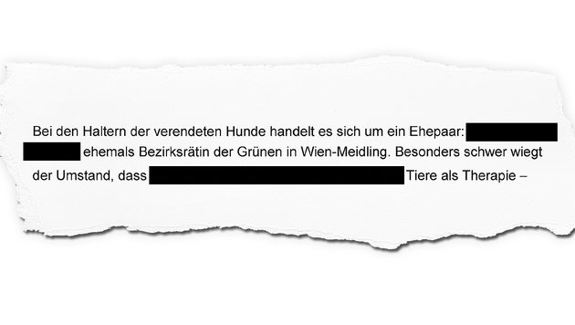 """Hunde in Auto verendet: """"Besitzerin ist Ex-Grüne"""" (Bild: """"Krone""""-Grafik)"""