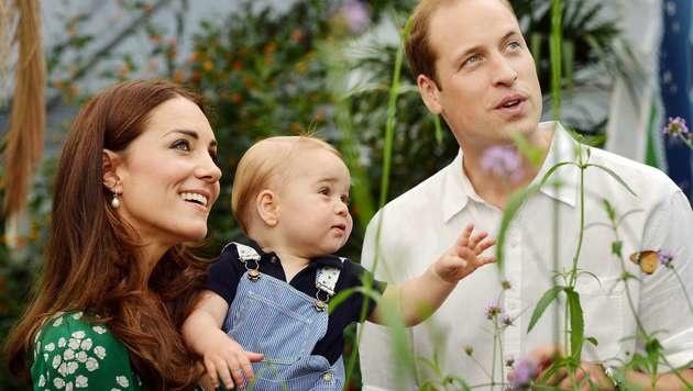 Bereits mit einem Jahr bereiste George mit seinen Eltern Australien und Neuseeland. (Bild: JOHN STILLWELL/AFP/picturedesk.com)