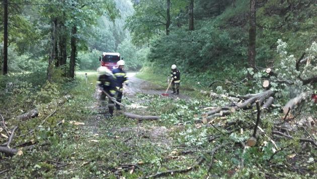 Schwere Unwetter zogen über das südliche Niederösterreich. (Bild: Einsatzdoku.at)
