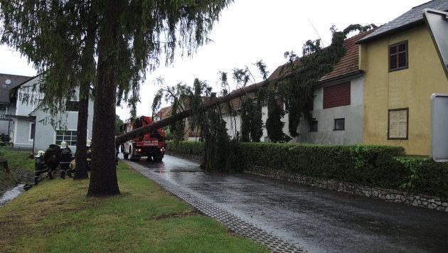 Hochwasseralarm an der Enns in Oberösterreich (Bild: APA/FF URECK/PETRITSCH)