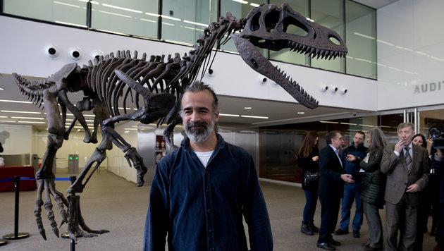 Paläontologe Sebastian Apesteguia vor einer Replika des Skeletts der neuen Saurier-Art (Bild: Associated Press)