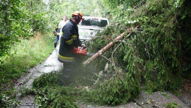 Hochwasseralarm an der Enns in Oberösterreich (Bild: FREIWILLIGE FEUERWEHR STRASSBURG)