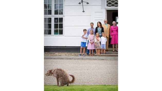 Prinz Christian muss herzlich lachen, als er den Hund sieht, der im Gras sein Geschäft verrichtet. (Bild: DPP/face to face)