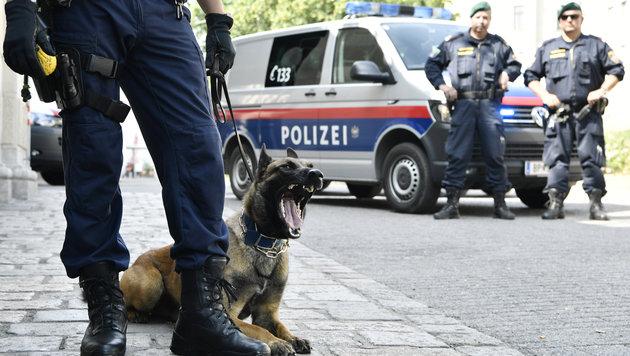 Polizei-Großeinsatz nach Streit in Asylwerberheim (Bild: APA/HANS KLAUS TECHT (Symbolbild))