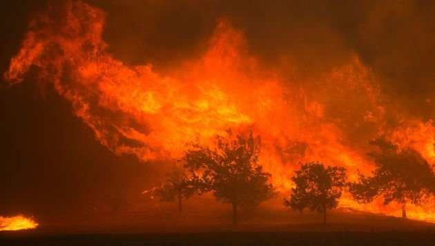USA drohen künftig mehr Sturmfluten und Waldbrände (Bild: APA/AFP/David Mcnew)