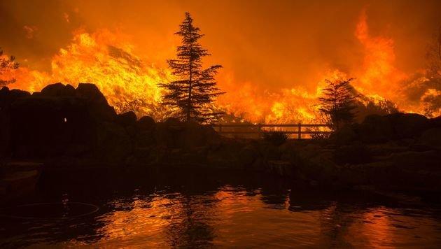 Riesiger Waldbrand in Kalifornien außer Kontrolle (Bild: APA/AFP/David Mcnew)