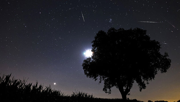 Sternschnuppen-Regen heuer ohne störenden Mond (Bild: thinkstockphotos.de)
