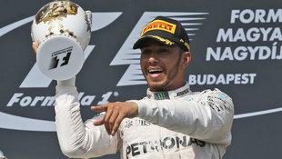 Ungarn-GP: Sieg und WM-F�hrung f�r Lewis Hamilton (Bild: The Associated Press)